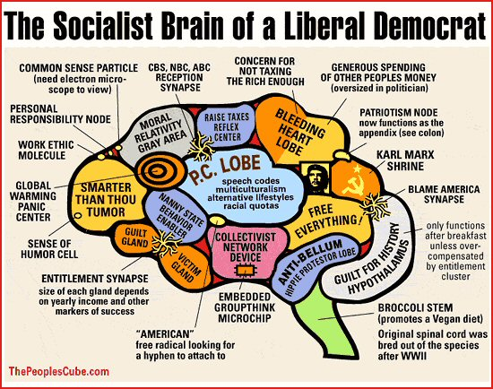 Your Brain on Liberal Socialism