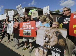 lion liberals